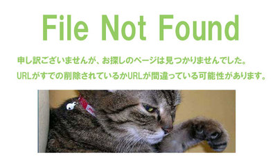 File Not Foundの説明画像